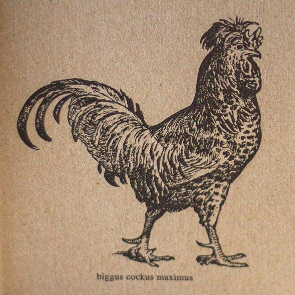 Biggus Cockus Maximus Letterpress Notebook 1